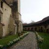 biserica-cisnadie-05