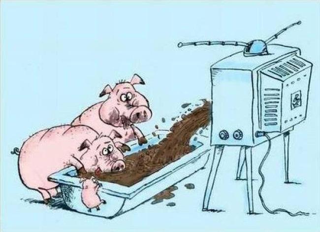 porci-tv