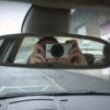 GoPro Hero2 HD în spatele oglinzii de pe locul şoferului