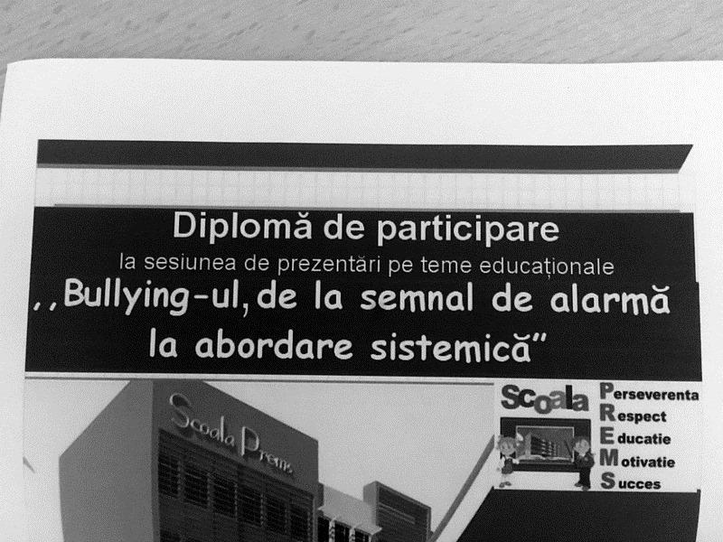 Bullying: aș vrea să se rezolve pașnic, dar nu se poate