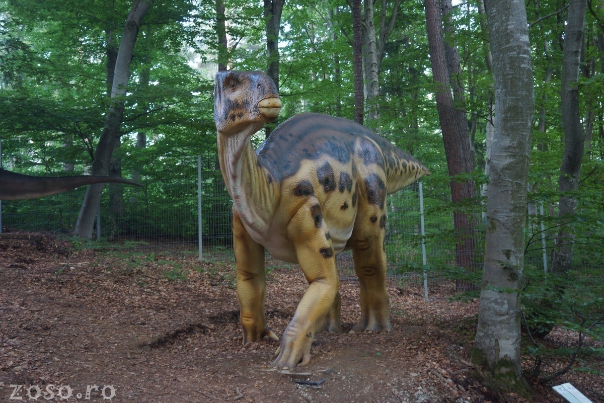 Dino Parc Râșnov, dovada că turistul vrea distracție pe Valea Prahovei