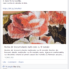 screencapture-www-facebook-com-raduefconstantinescu-posts-724038867642246