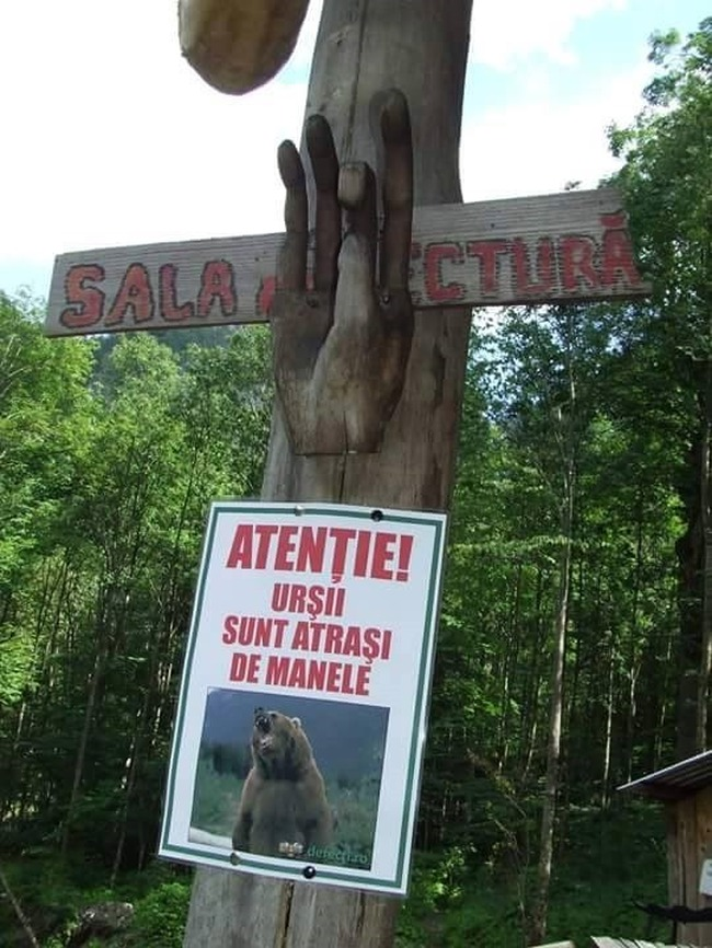 ursi-manele
