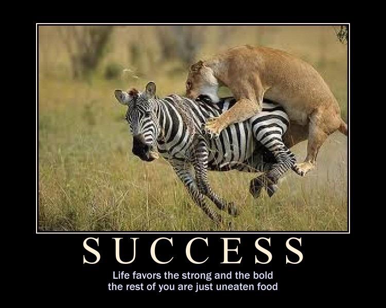 fun-succes