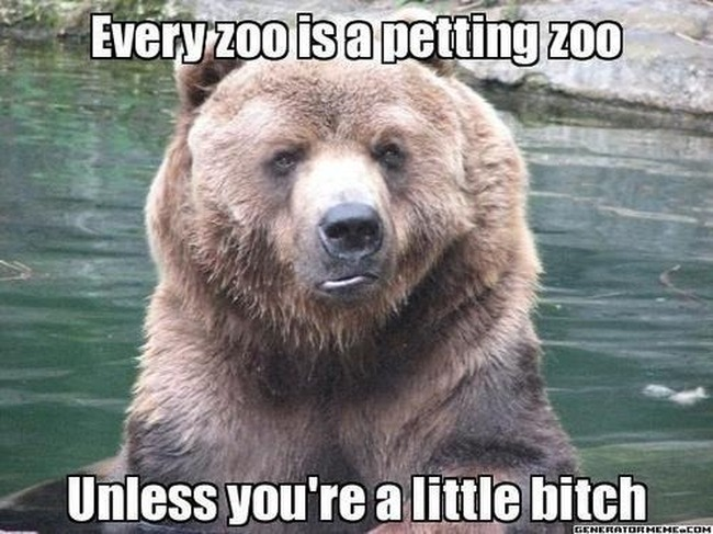say-petting-zoo