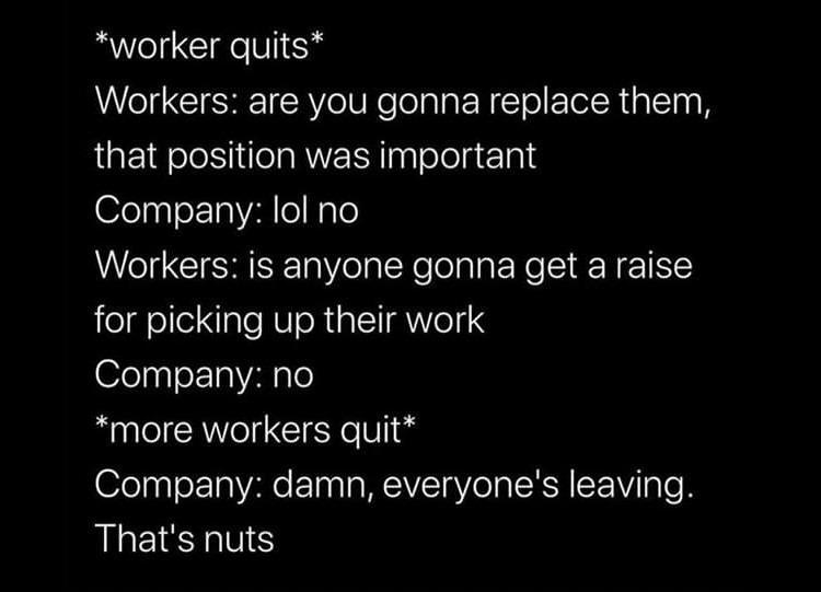 fun-munca-demisii