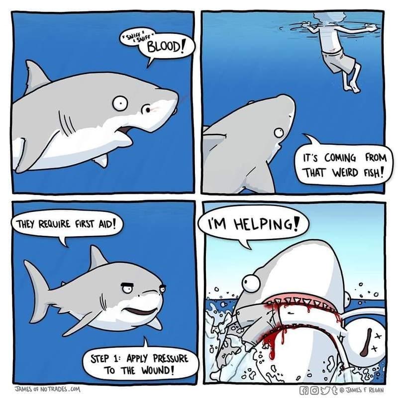 fun-rechin-ajutor