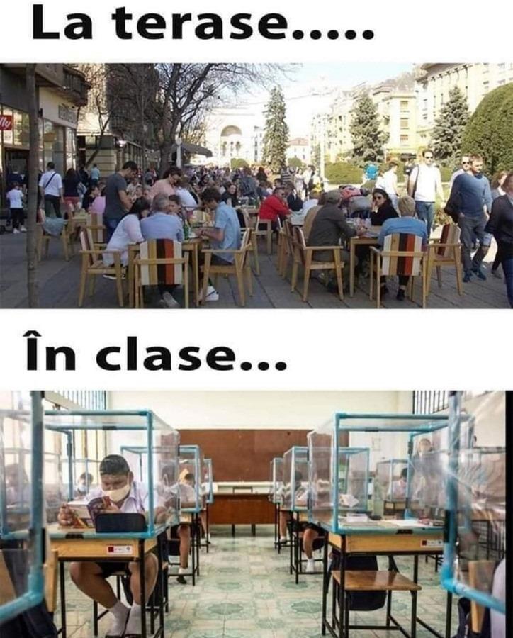 scoala-8