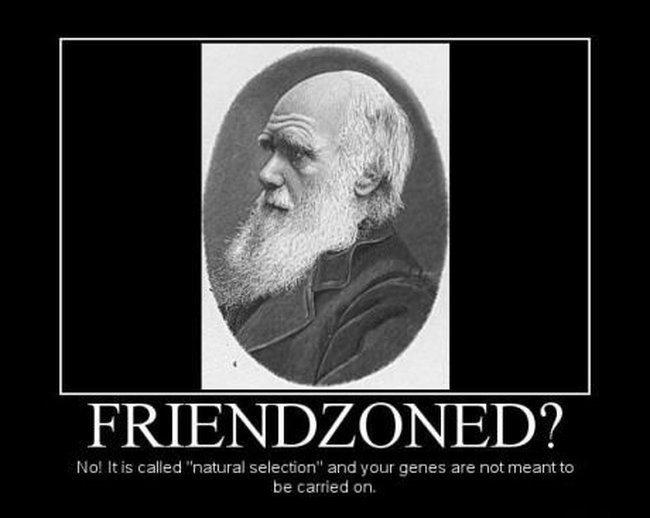 fun-friendzoned