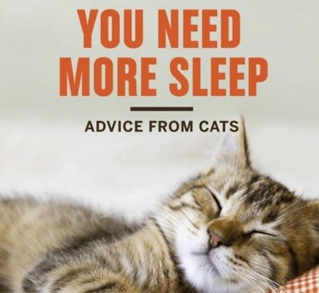 fun-sleep