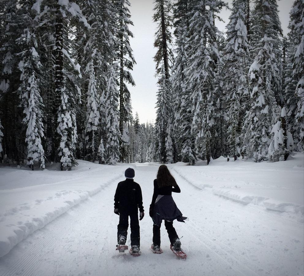 iarna-zapada-14